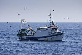 pêche en mer saint gilles croix de vie