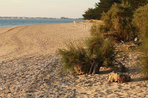 plage de saint gilles croix de vie