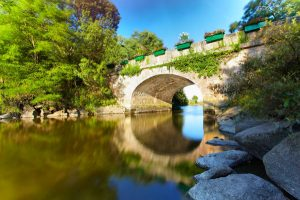 Pont nature Notre-Dame-de-Riez